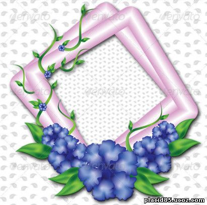 Blue Flowers with Pink Frames